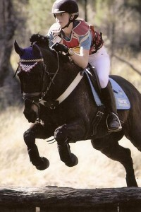 girl on horse jumping over a hurdle